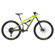Cannondale Jekyll 29 3 2019